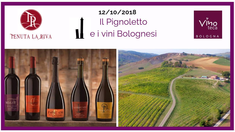 Il pignoletto e i vini bolognesi – Vinoteca Bologna